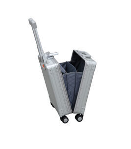 "Vertical Business Carry-On 20"" Koffer in Platin"