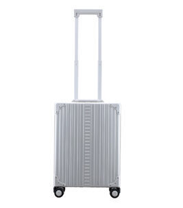 "Vertical Overnight Carry-On 21"" Koffer in Platin"